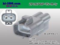 ●[sumitomo] 187 type 2 pole TS waterproofing M connector (no terminal)/2P187WP-TS-M-tr