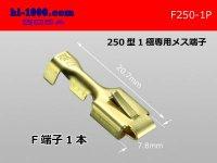 [yazaki]250 Type  1 pole exclusive use  female  terminal /F250-1P