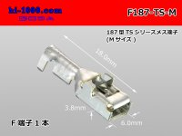 [Sumitomo]187 type TS, DL series F terminal (medium size) /F187-TS-M