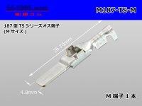 [Sumitomo]187 type TS, DL series M terminal (medium size) /M187-TS-M