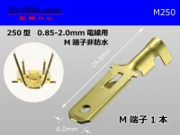 250 Type 0.85-2.0mm Electric cable   male  terminal /M250