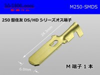[sumitomo] 250 Type DS/HD series  male  terminal /M250-SMDS