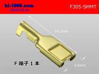 305 Type  [SWS] MT series  female  terminal /F305-SMMT