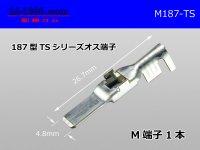 187 Type  [SWS] TS series M Terminal /M187-TS