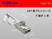 187 Type  [SWS] TS series F Terminal /F187-TS