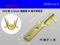 250 Type 3.0mm Electric cable   male  terminal /M250-L-3.0