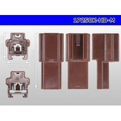 Photo3: 1P250 Type HD series  Male side  Connector only  (No male terminal) /1P250-HD-M-tr