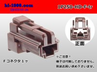 1P250 Type HD series  Female side  Connector only  (No female terminal) /1P250-HD-F-tr