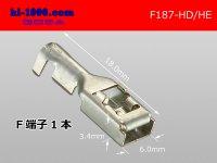 187 Type HD/HE series F terminal /F187-HD/HE