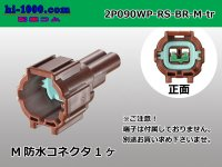 090 Type  [SWS] RS /waterproofing/  series  2 poles  [color Brown] M Connector only  (No terminal) /2P090WP-RS-BR-M-tr