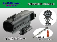 025 Type TS /waterproofing/  series  2 poles  [color Black] M Connector kit /2P025WPK-TS-BK-M