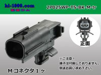 025 Type TS /waterproofing/  series  2 poles  [color Black] M Connector only  (No terminal) /2P025WP-TS-BK-M-tr