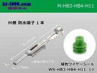 Delphi [Delphi] HB3/HB4/H11  /waterproofing/ M Terminal /M-HB3-HB4-H11