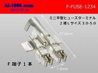Mini flat type  Type fuse Terminal   Duplicate   L size AVS3.0-5.0