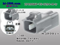 [SWS]  2 poles 090 Type TS /waterproofing/ M Connector only 0294( [color Gray] )/2P090WP-TS-0294-M-tr